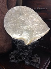 Stunning Chinese Mother of Pearl Carved Shell