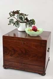 19th Century Mahogany Cellaret Wine Chest. U560