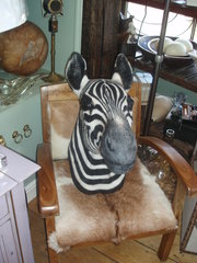 Faux zebra taxidermy mount