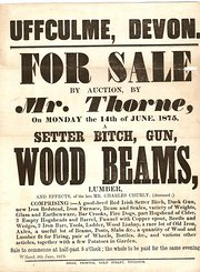 Auction Sale Details 1875