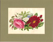 Circa 1835  Floral Watercolour