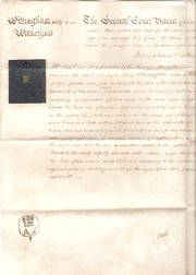 Court Document of Willingham w