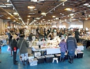 Lincoln_Sunday_Antiques_Market